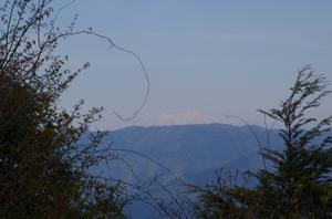 中美濃林道 2 白山