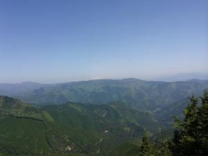 中美濃林道 白山 1