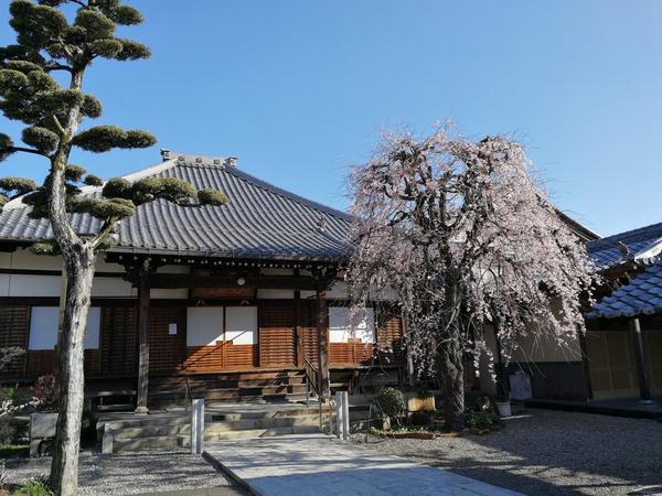 正興寺 1