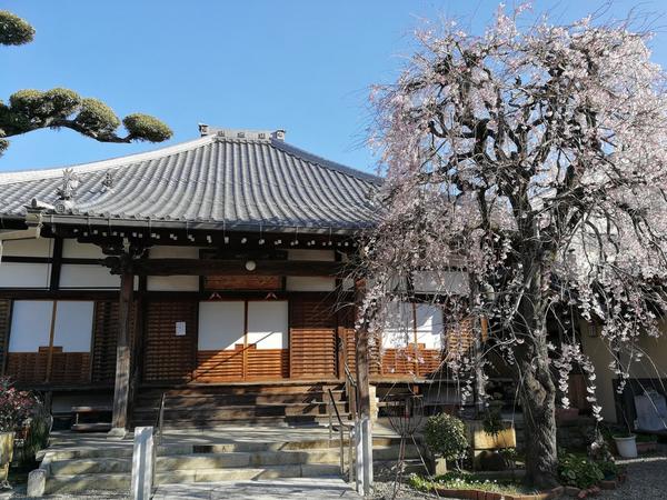 正興寺 2