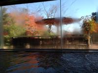 湯の山温泉 グリーンホテル 2