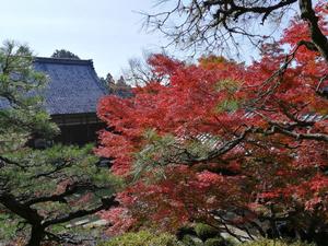 百済寺 4