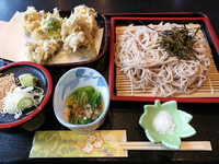 舞茸天 ざる蕎麦 1100